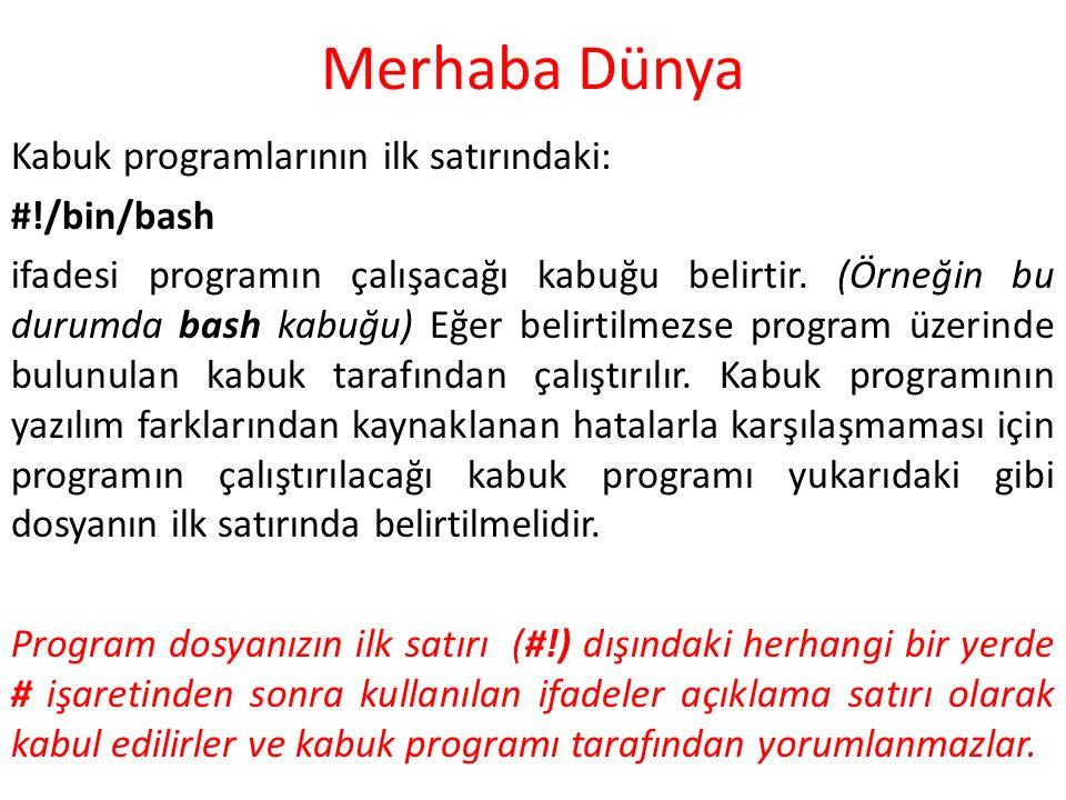 Merhaba Dünya Kabuk programlarının ilk satırındaki: #!/bin/bash