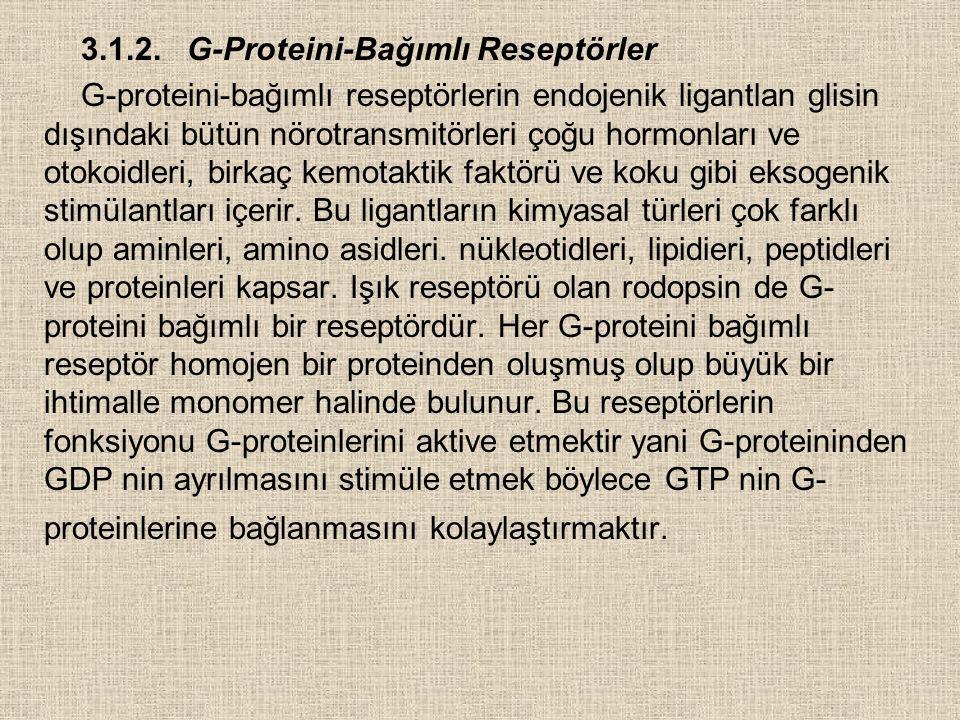 3.1.2. G-Proteini-Bağımlı Reseptörler