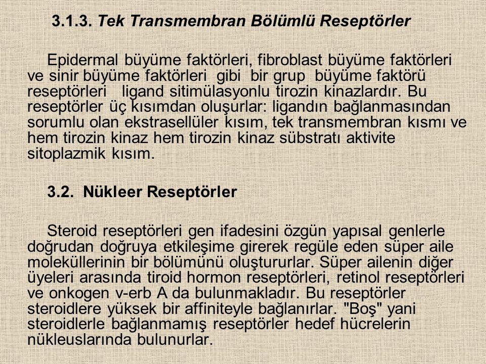 3.1.3. Tek Transmembran Bölümlü Reseptörler