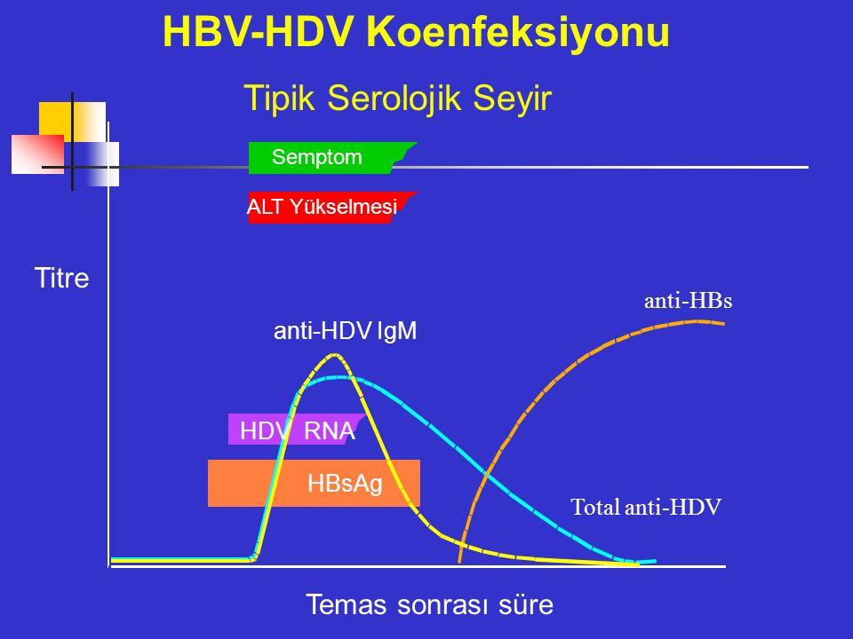 HBV-HDV Koenfeksiyonu