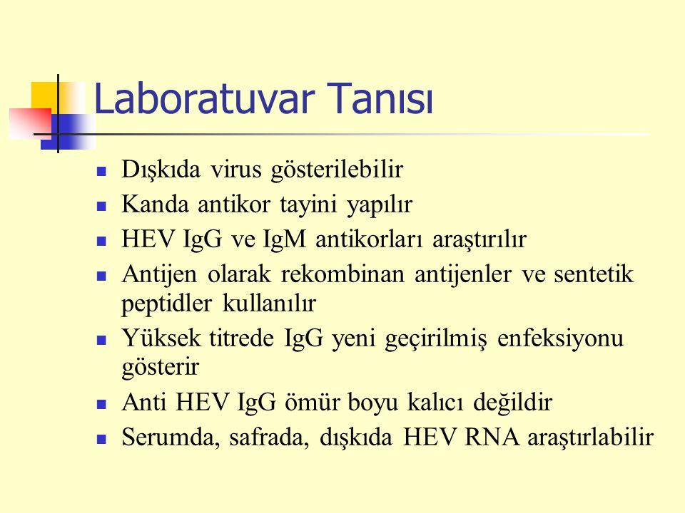 Laboratuvar Tanısı Dışkıda virus gösterilebilir