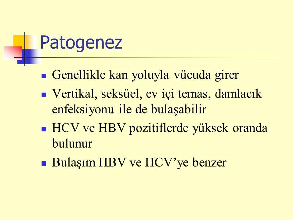 Patogenez Genellikle kan yoluyla vücuda girer