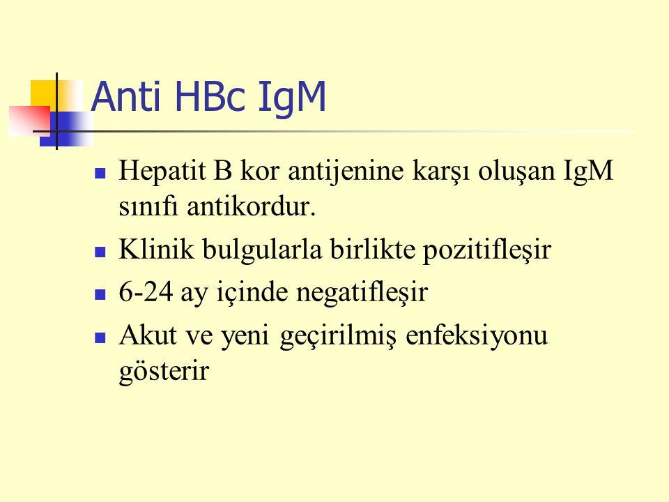 Anti HBc IgM Hepatit B kor antijenine karşı oluşan IgM sınıfı antikordur. Klinik bulgularla birlikte pozitifleşir.