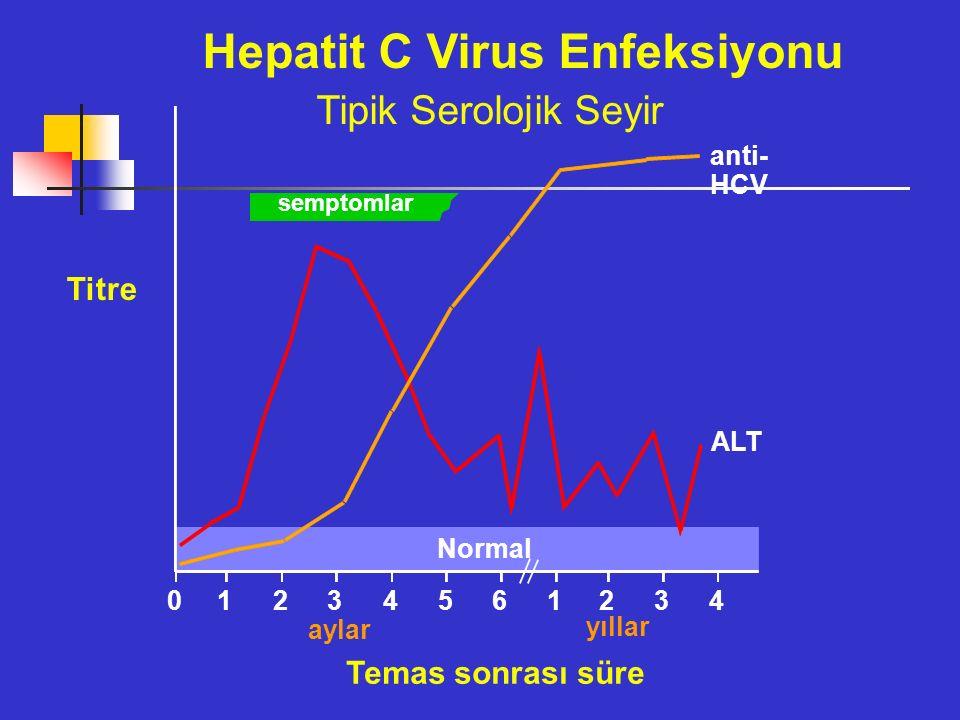 Hepatit C Virus Enfeksiyonu