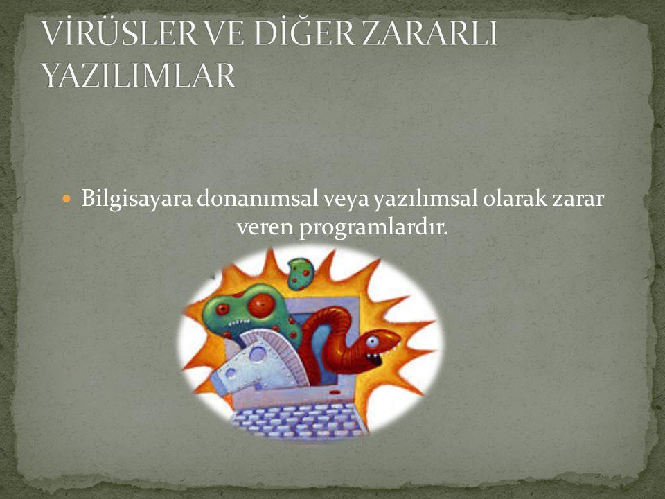 VİRÜSLER VE DİĞER ZARARLI YAZILIMLAR