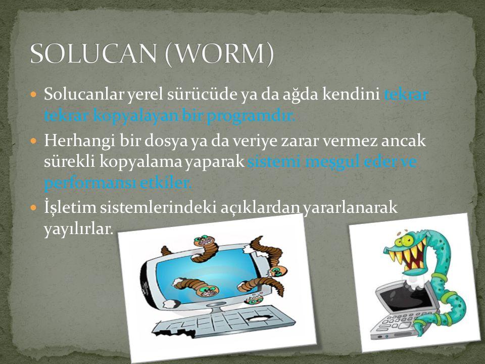 SOLUCAN (WORM) Solucanlar yerel sürücüde ya da ağda kendini tekrar tekrar kopyalayan bir programdır.