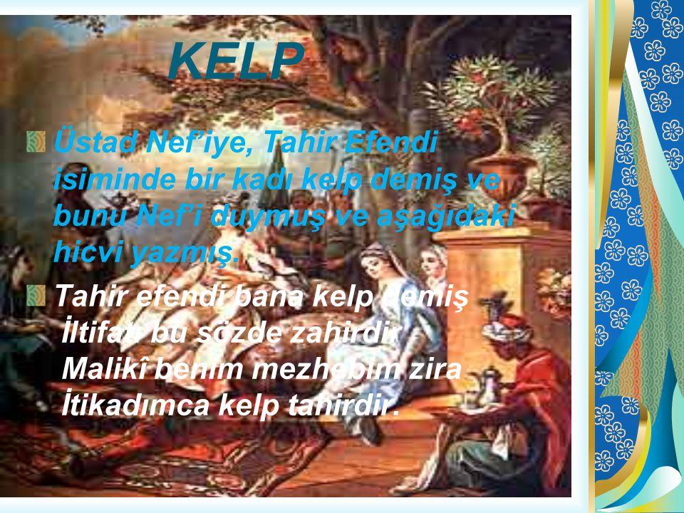KELP Üstad Nef'iye, Tahir Efendi isiminde bir kadı kelp demiş ve bunu Nef'i duymuş ve aşağıdaki hicvi yazmış.