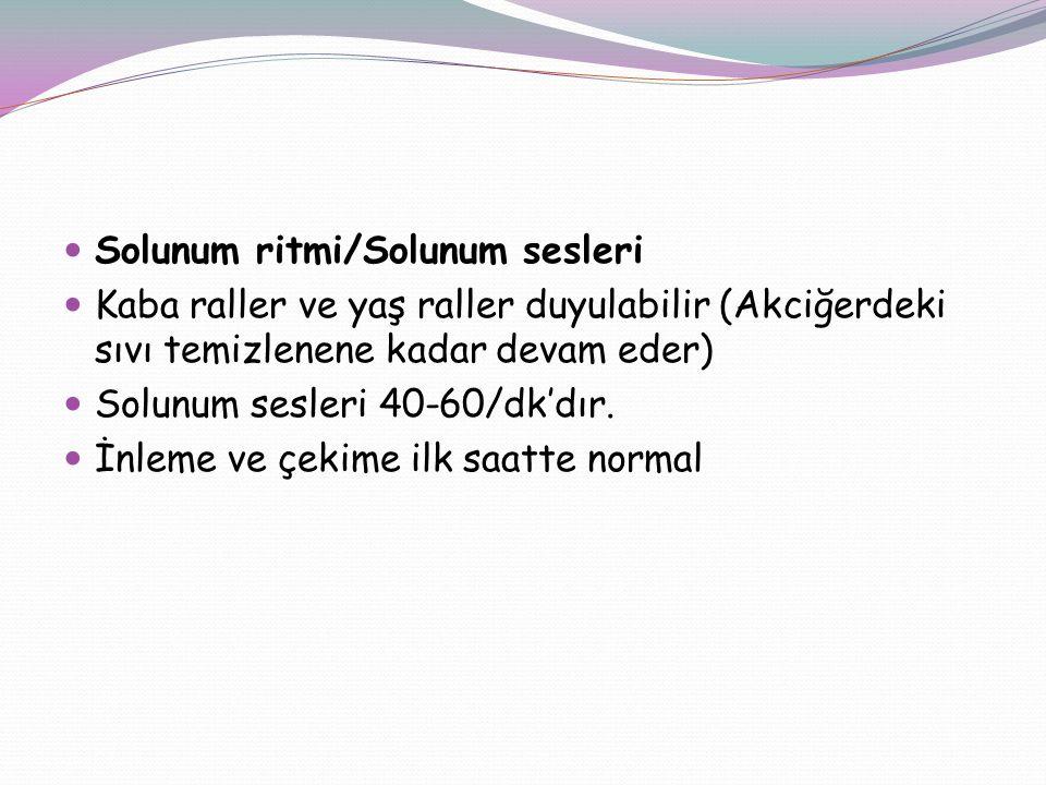Solunum ritmi/Solunum sesleri