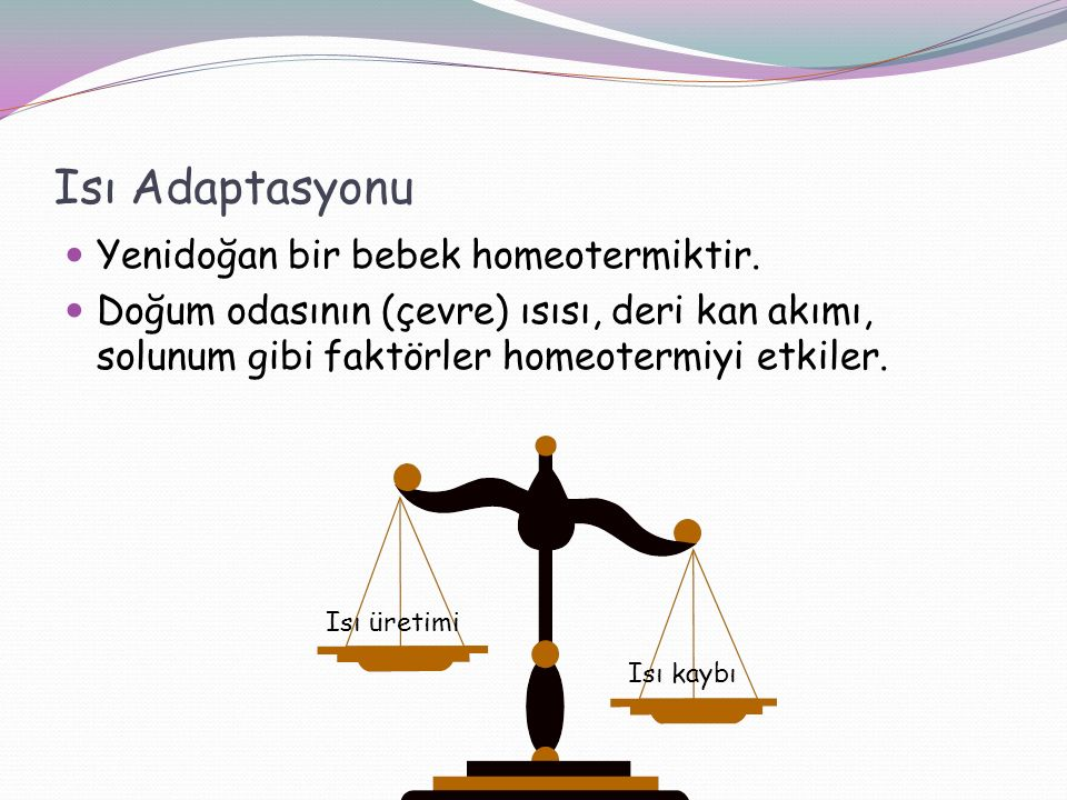 Isı Adaptasyonu Yenidoğan bir bebek homeotermiktir.