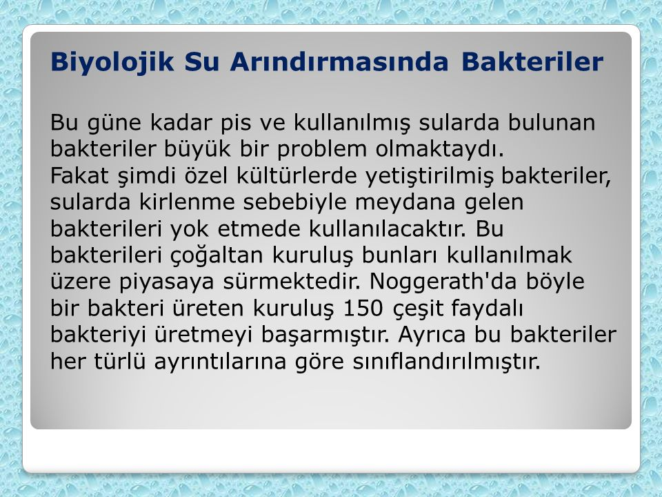 Biyolojik Su Arındırmasında Bakteriler