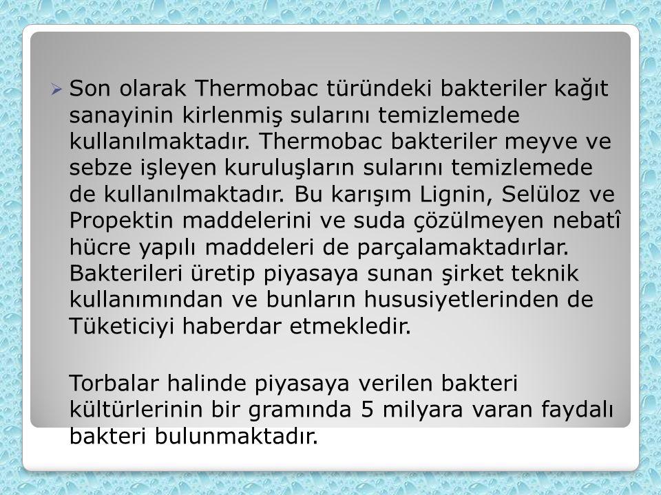 Son olarak Thermobac türündeki bakteriler kağıt sanayinin kirlenmiş sularını temizlemede kullanılmaktadır.