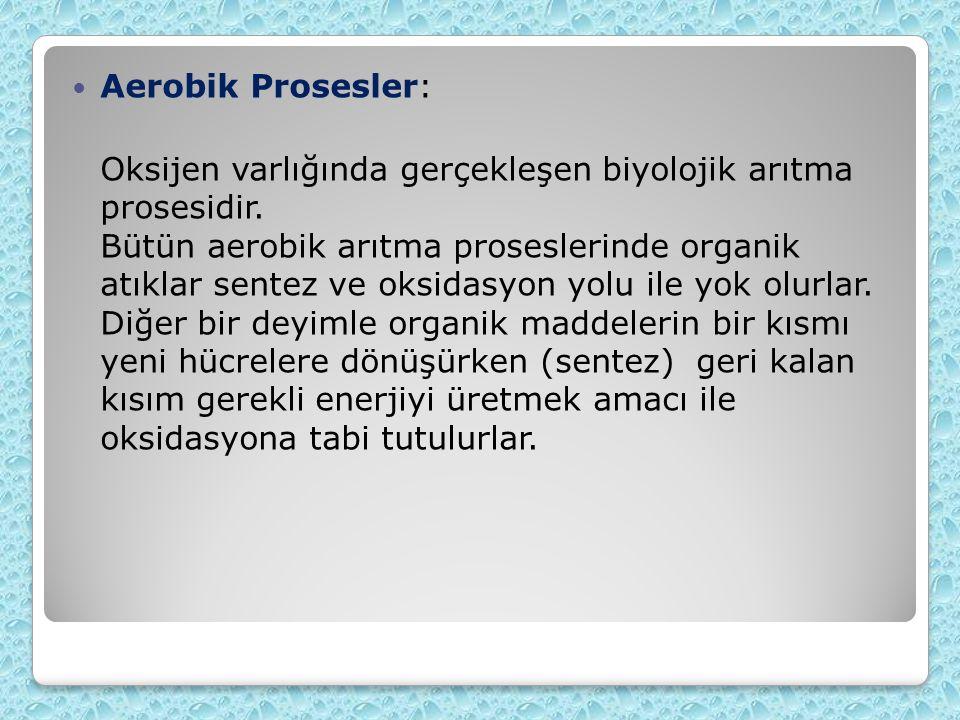 Aerobik Prosesler: Oksijen varlığında gerçekleşen biyolojik arıtma prosesidir.