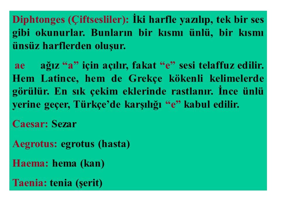 Aegrotus: egrotus (hasta) Haema: hema (kan) Taenia: tenia (şerit)