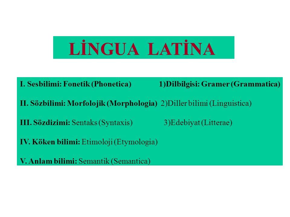 LİNGUA LATİNA I. Sesbilimi: Fonetik (Phonetica) 1)Dilbilgisi: Gramer (Grammatica)