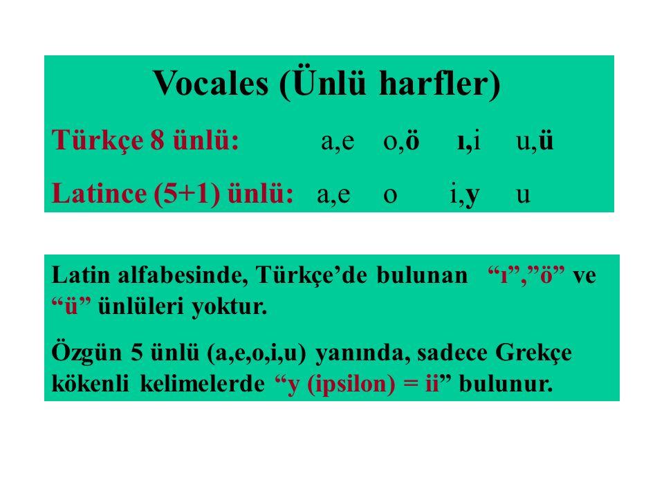 Vocales (Ünlü harfler)