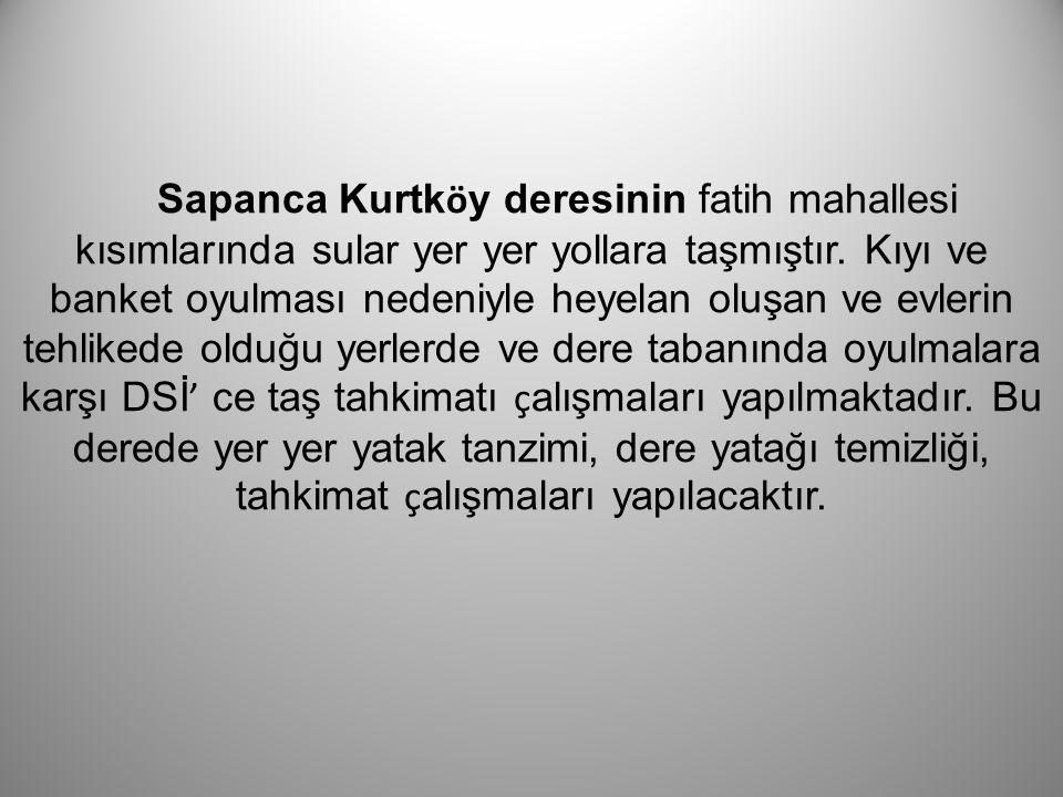 Sapanca Kurtköy deresinin fatih mahallesi kısımlarında sular yer yer yollara taşmıştır.