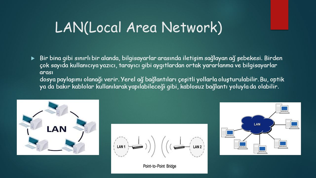 LAN(Local Area Network)