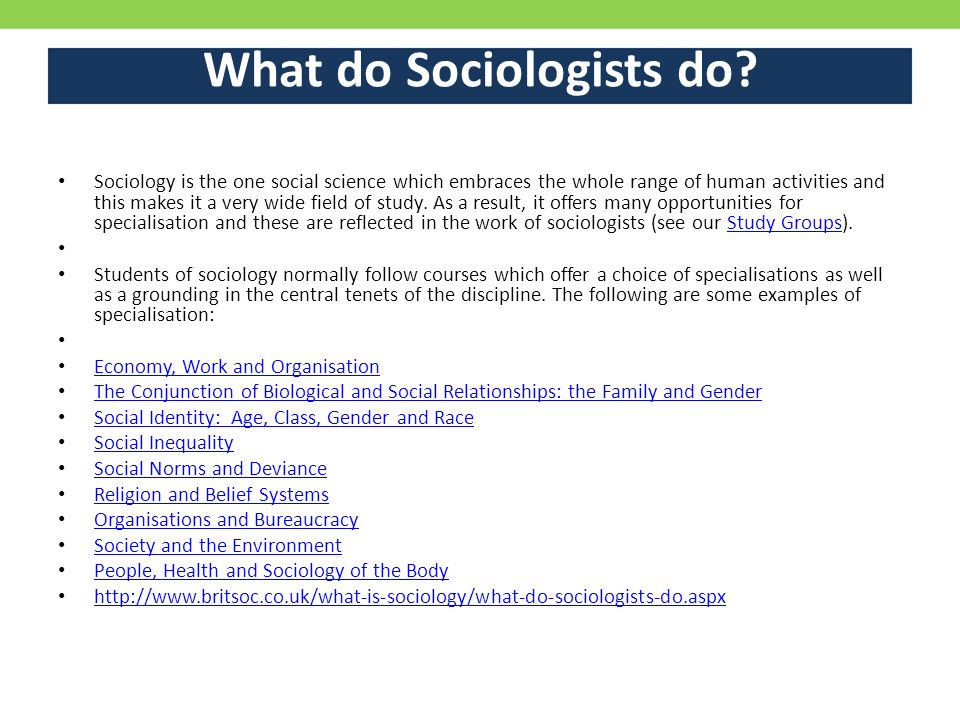 What do Sociologists do