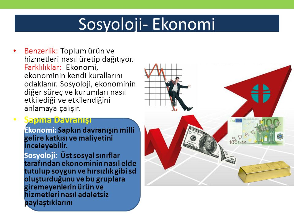 Sosyoloji- Ekonomi Sapma Davranışı