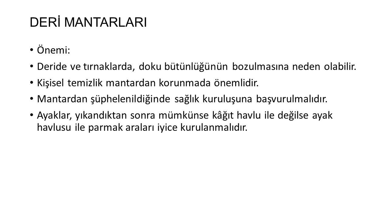 DERİ MANTARLARI Önemi: