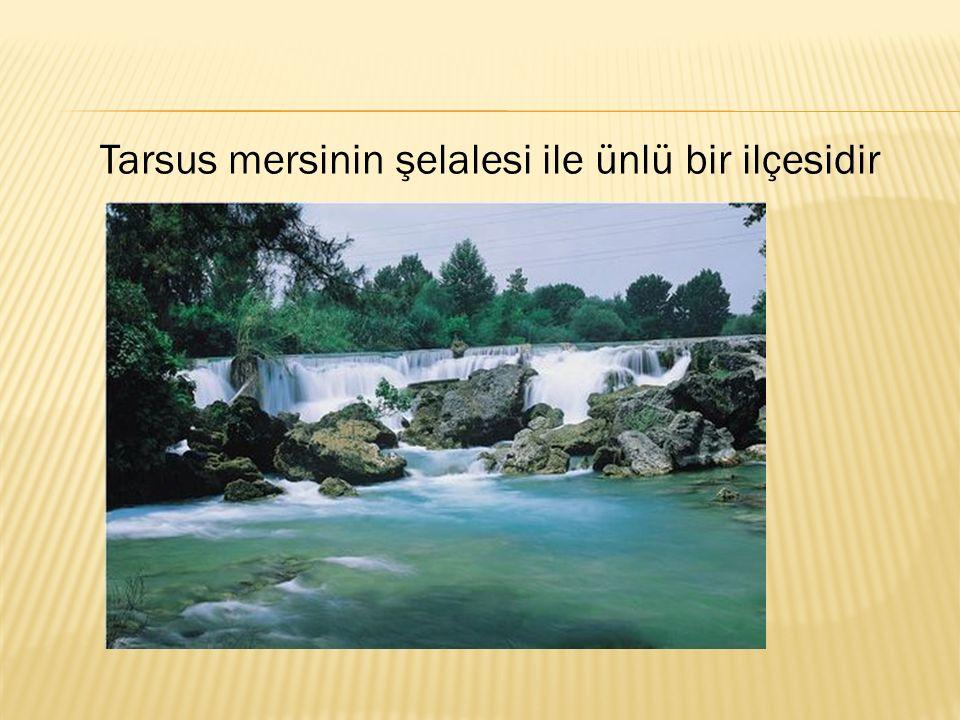 Tarsus mersinin şelalesi ile ünlü bir ilçesidir
