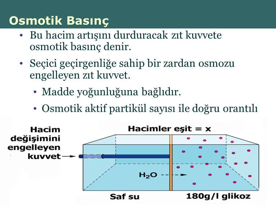 Osmotik Basınç Bu hacim artışını durduracak zıt kuvvete osmotik basınç denir. Seçici geçirgenliğe sahip bir zardan osmozu engelleyen zıt kuvvet.