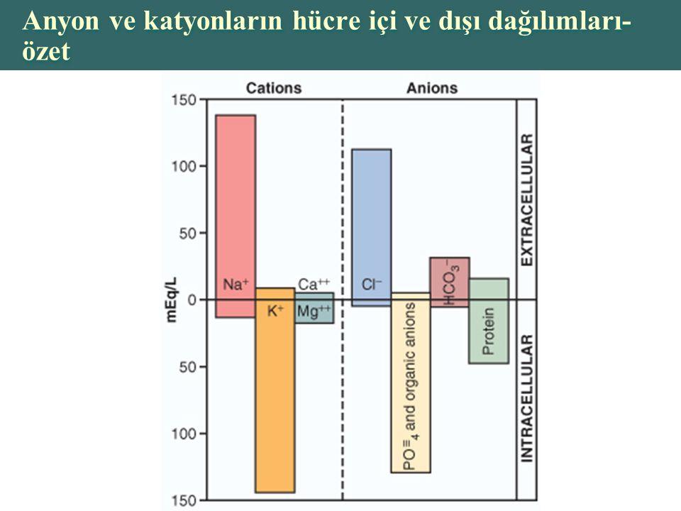 Anyon ve katyonların hücre içi ve dışı dağılımları-özet