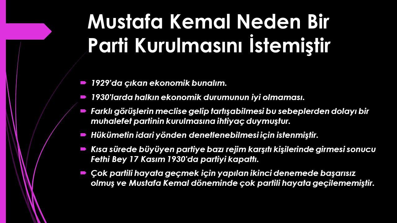 Mustafa Kemal Neden Bir Parti Kurulmasını İstemiştir