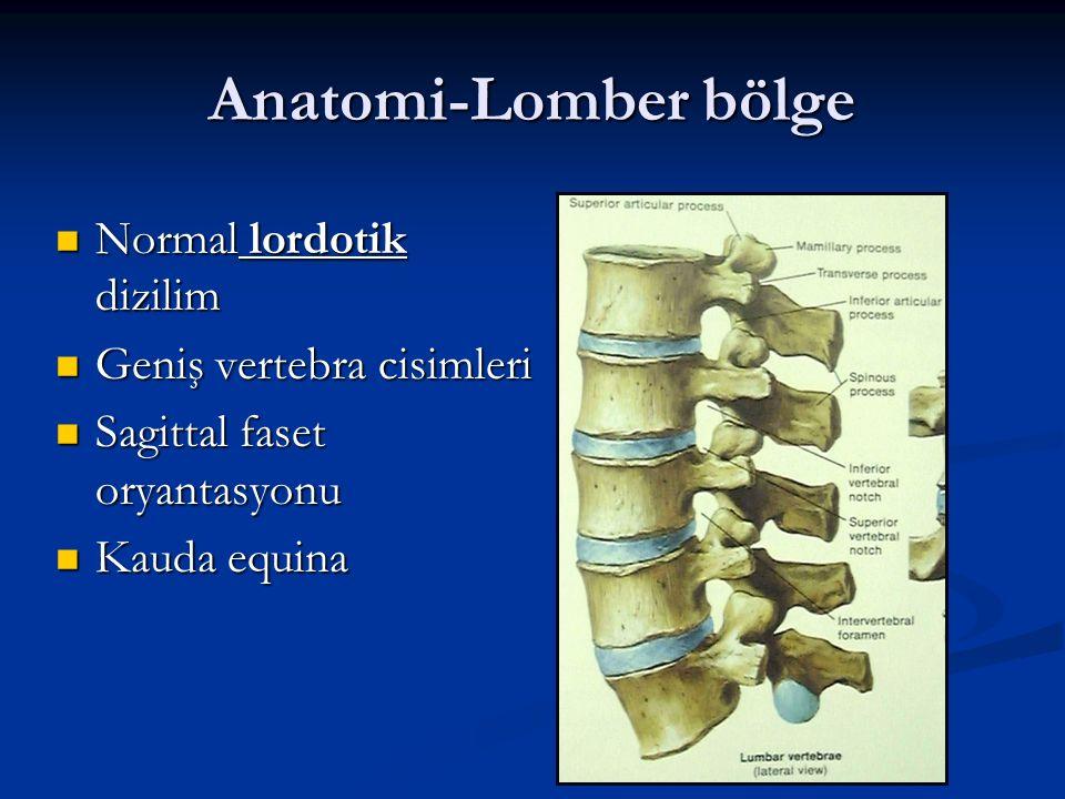 Anatomi-Lomber bölge Normal lordotik dizilim Geniş vertebra cisimleri