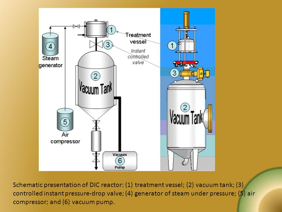 Schematic presentation of DIC reactor: (1) treatment vessel; (2) vacuum tank; (3) controlled instant pressure-drop valve; (4) generator of steam under pressure; (5) air compressor; and (6) vacuum pump.