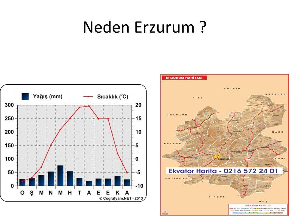Neden Erzurum