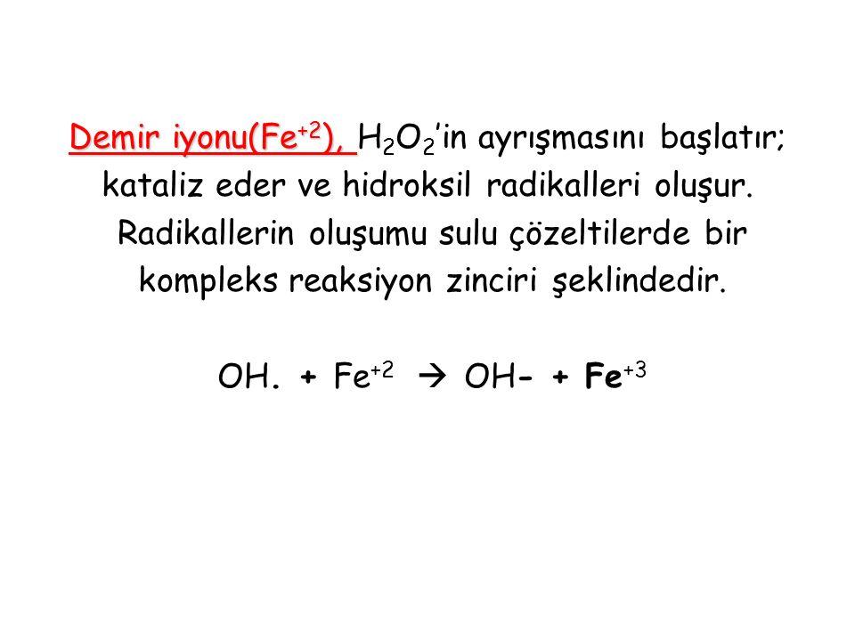 Demir iyonu(Fe+2), H2O2'in ayrışmasını başlatır; kataliz eder ve hidroksil radikalleri oluşur.