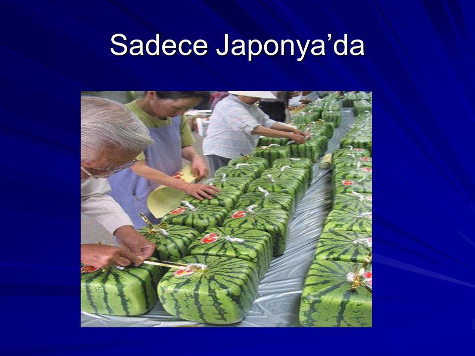 Sadece Japonya'da