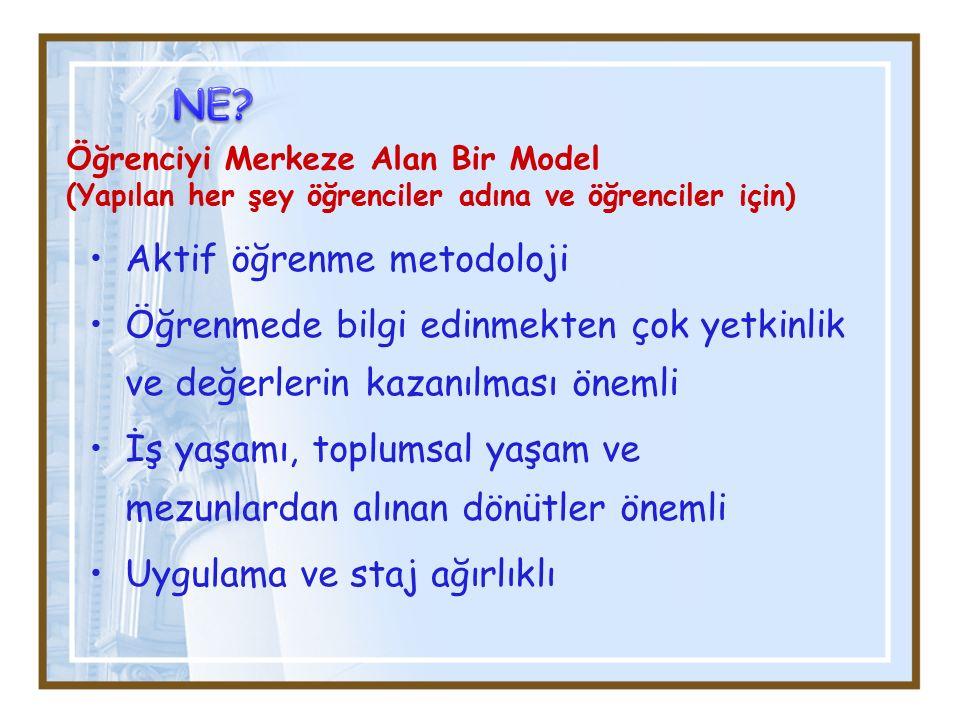NE Aktif öğrenme metodoloji