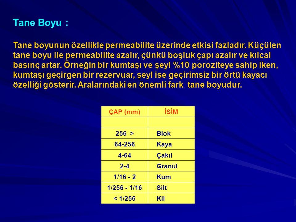 Tane Boyu :