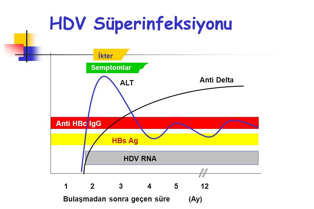 HDV Süperinfeksiyonu Anti Delta ALT Anti HBc IgG HBs Ag HDV RNA