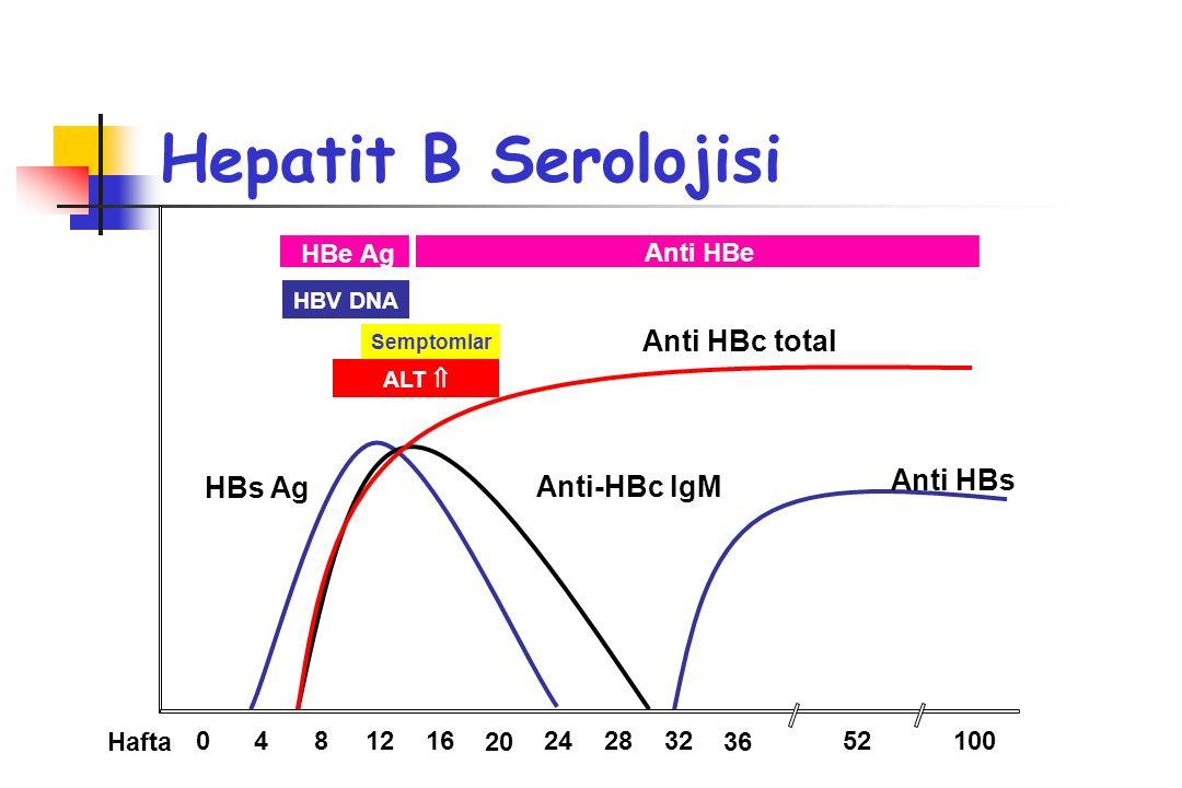 Hepatit B Serolojisi Anti HBc total Anti HBs HBs Ag Anti-HBc IgM