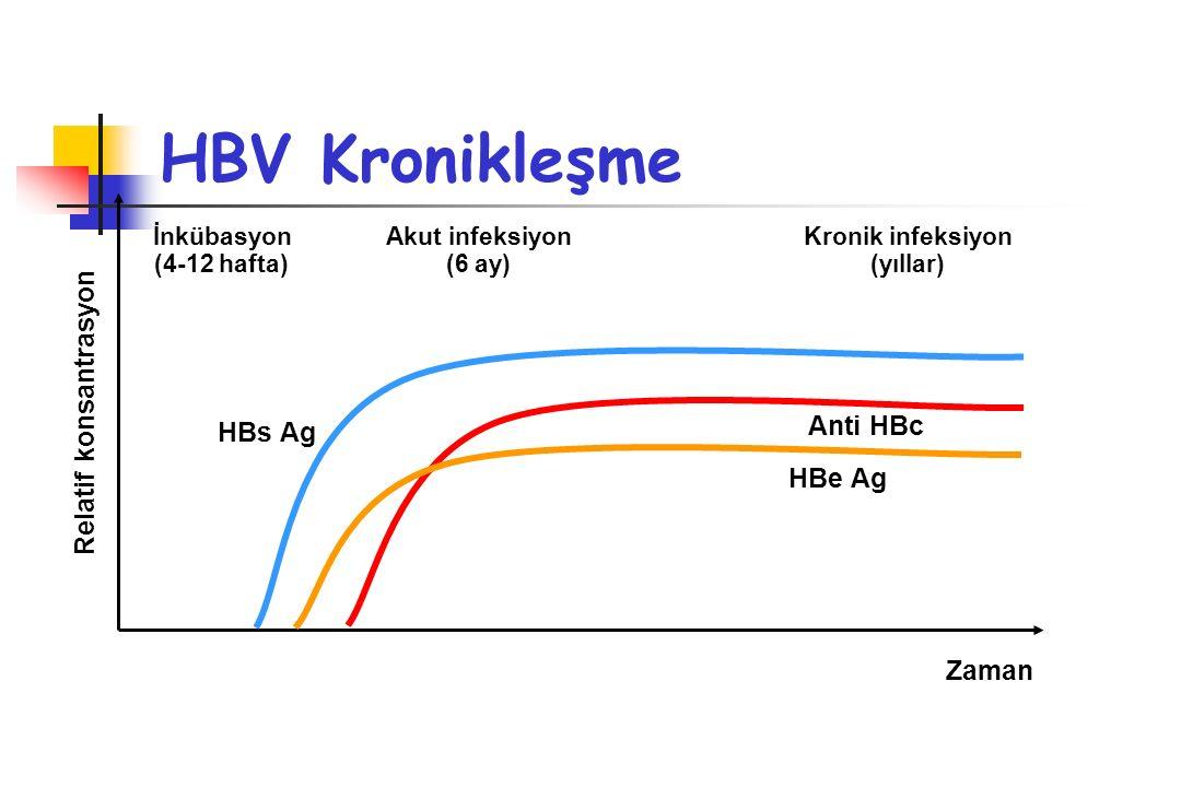 HBV Kronikleşme Relatif konsantrasyon Anti HBc HBs Ag HBe Ag Zaman
