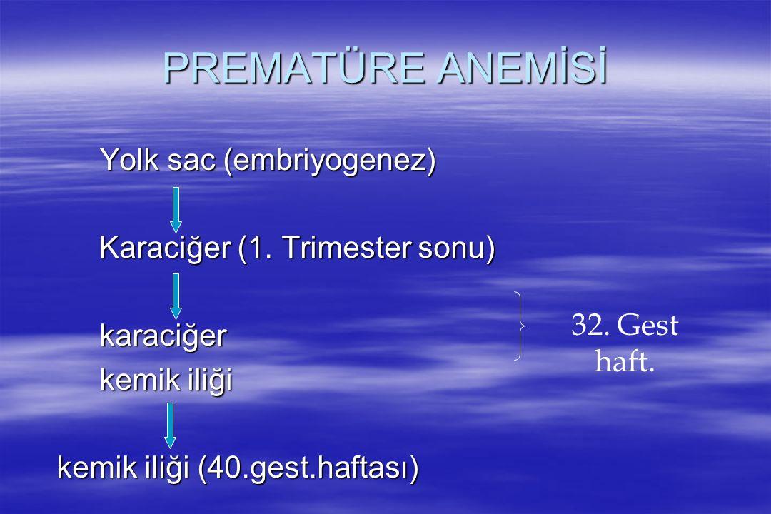PREMATÜRE ANEMİSİ Yolk sac (embriyogenez)