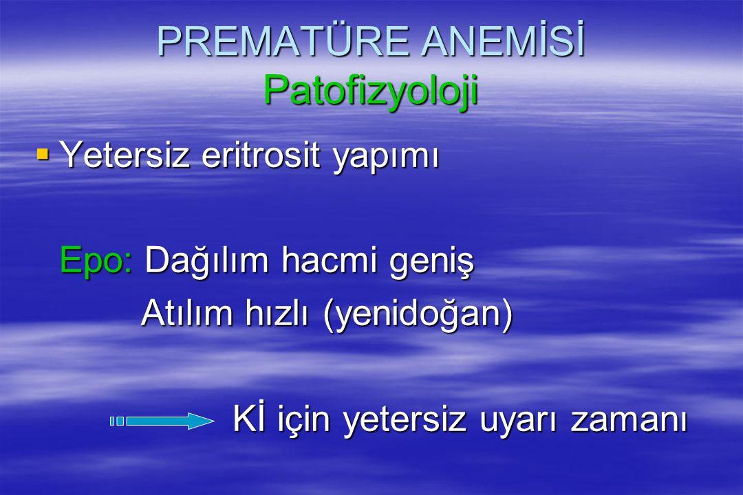 PREMATÜRE ANEMİSİ Patofizyoloji
