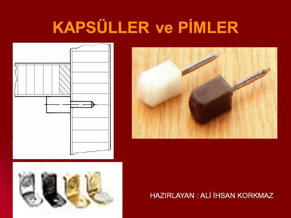 KAPSÜLLER ve PİMLER