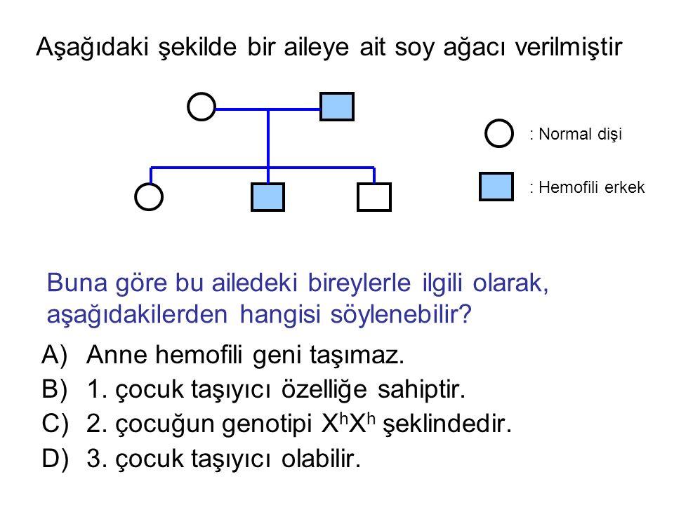Aşağıdaki şekilde bir aileye ait soy ağacı verilmiştir