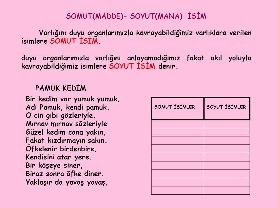 SOMUT(MADDE)- SOYUT(MANA) İSİM