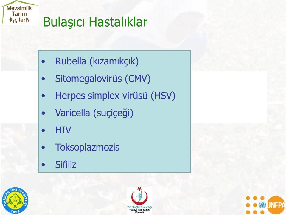 Bulaşıcı Hastalıklar Rubella (kızamıkçık) Sitomegalovirüs (CMV)
