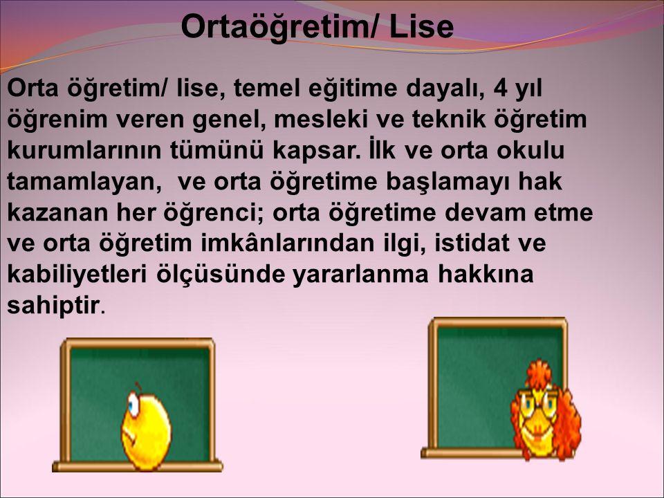 Ortaöğretim/ Lise