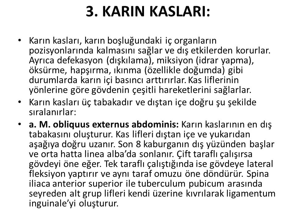 3. KARIN KASLARI: