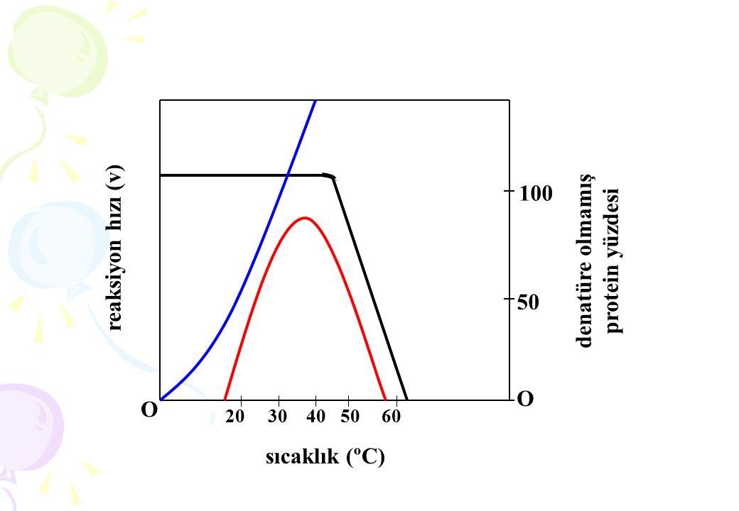 Sistematik İsimlendirme: ATP + D-Glukoz ADP + D-Glukoz-6-Fosfat