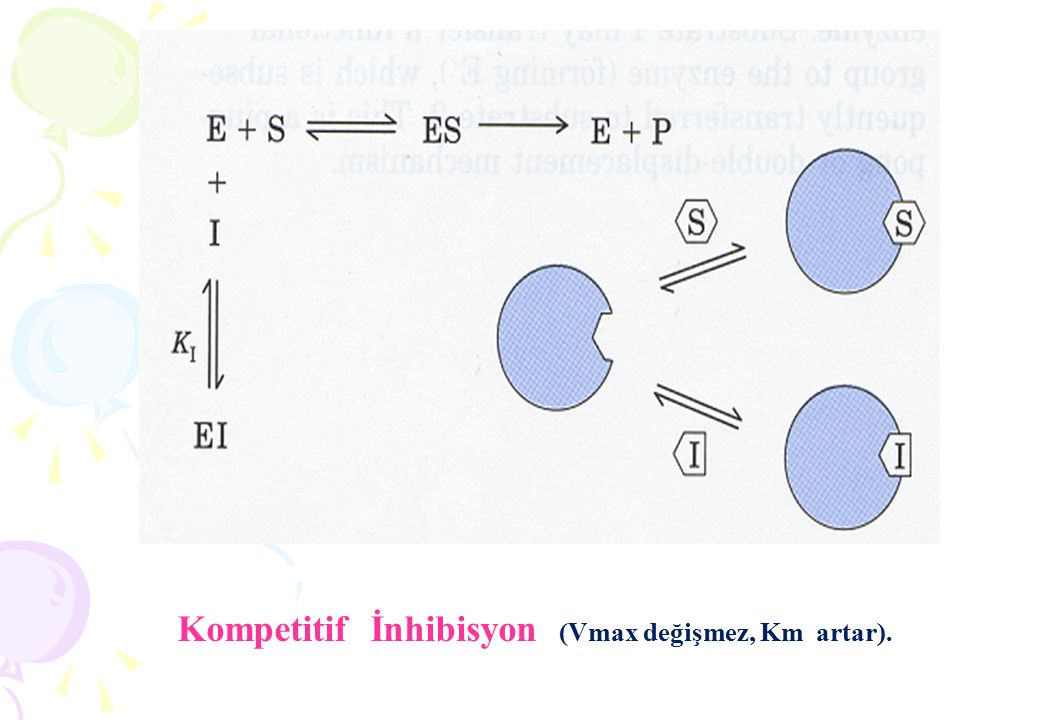 2.SUBSTRAT KONSANTRASYONU