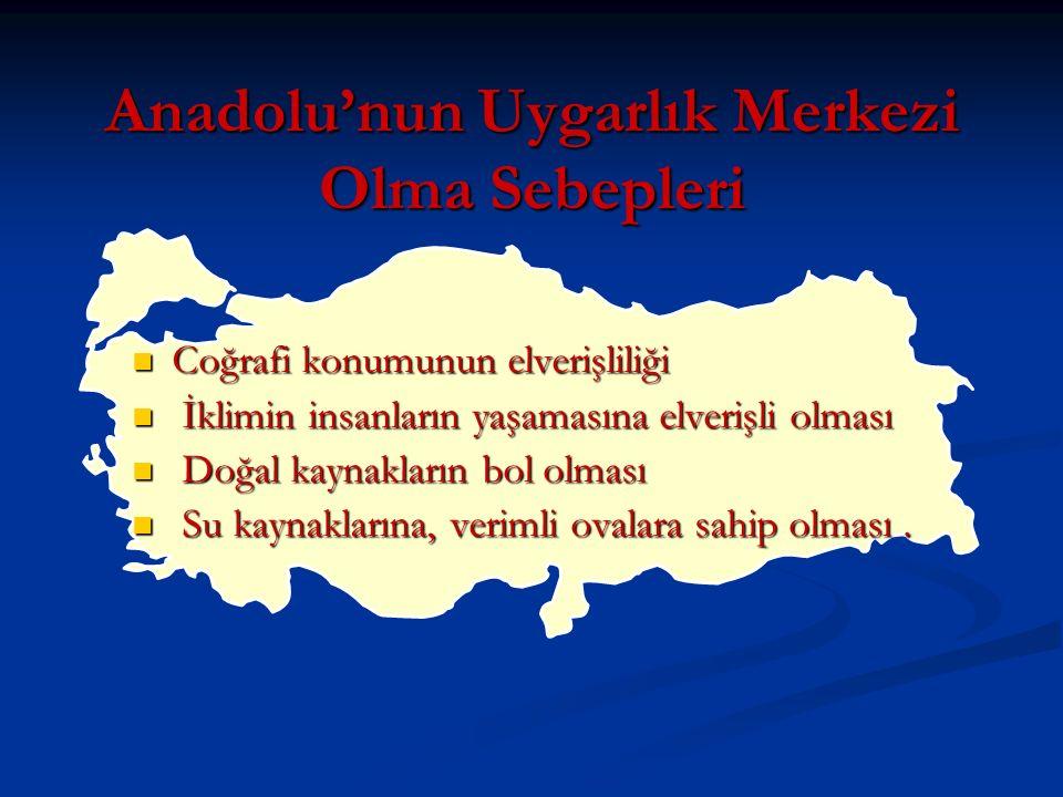 Anadolu'nun Uygarlık Merkezi Olma Sebepleri