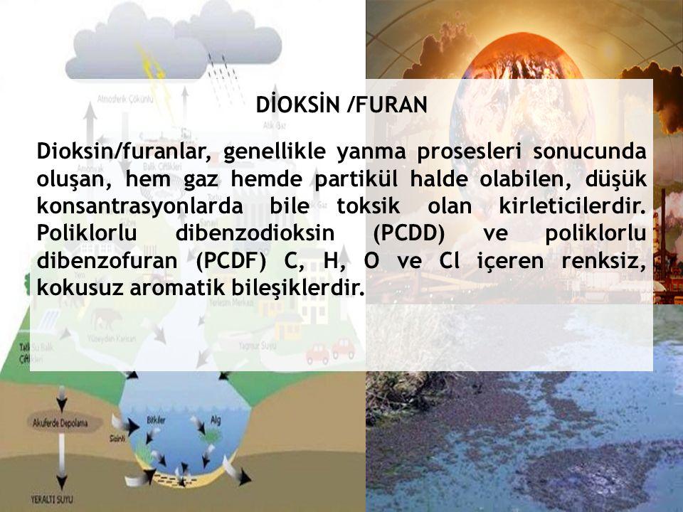 DİOKSİN /FURAN